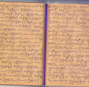Thomas Pfeffer - Manuscript